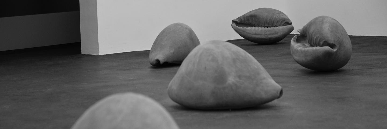 Shell  2014 © Melik Ohanian